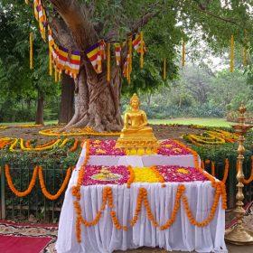 22-Ashadha-Purnima-Dhamma-Chakra-Parvattana-Event-in-Rashtrapati-Bhavan-02